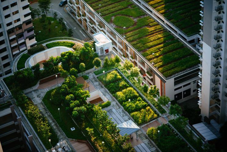 Instituto de Engenharia de Coimbra aposta em mestrado em Cidades Sustentáveis e Inteligentes